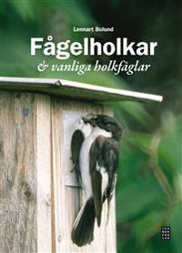 Fågelholkar & vanliga holkfåglar