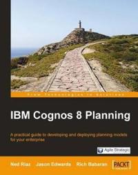 IBM Cognos 8 Planning