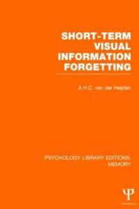 Short-Term Visual Information Forgetting