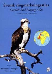 Svensk ringmärkningsatlas. Vol. 1, Lommar-rovfåglar = Divers-raptors