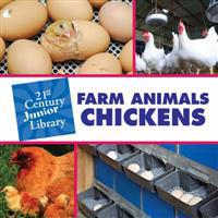 Farm Animals Chickens
