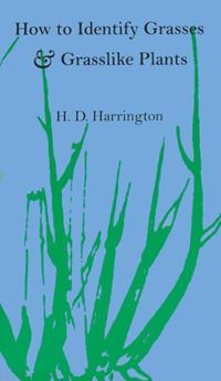 How to Identify Grasses & Grasslike Plants