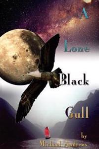 A Lone Black Gull