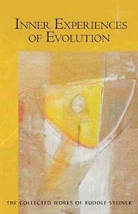 Inner Experiences of Evolution