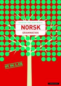 Norsk grammatikk