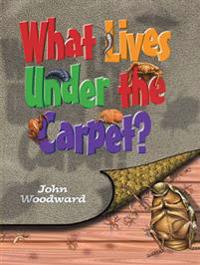 What Lives Under the Carpet?