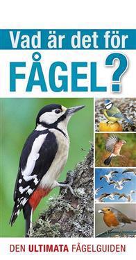 Vad är det för fågel? : den ultimata fågelguiden