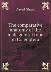 The Comparative Anatomy of the Male Genital Tube in Coleoptera