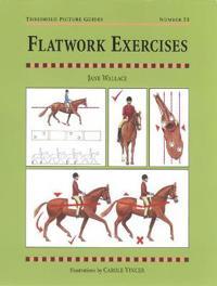 Flatwork Exercises