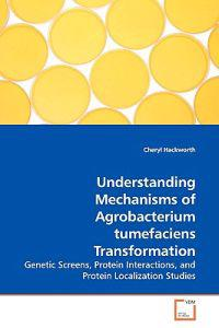Understanding Mechanisms of Agrobacterium Tumefaciens Transformation