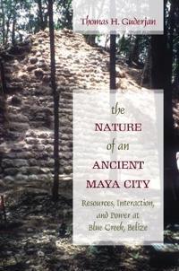 The Nature of an Ancient Maya City