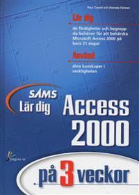 Lär dig Access 2000 på 3 veckor