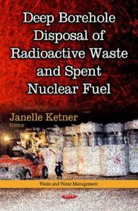Deep Borehole Disposal of Radioactive Waste and Spent Nuclear Fuel