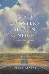 Small Disasters Seen in Sunlight