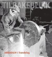 Arbeidsliv i Trøndelag -  pdf epub