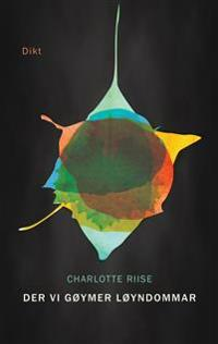 Der vi gøymer løyndommar - Charlotte Riise pdf epub