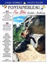 Fontainebleau fun bloc - escalade - bouldering