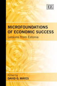 Microfoundations of Economic Success
