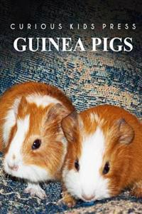 Guinea Pigs - Curious Kids Press