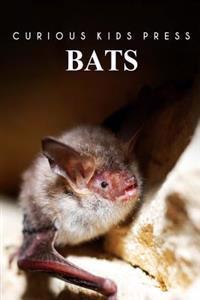 Bats - Curious Kids Press