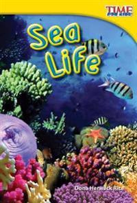 Sea Life (Upper Emergent)