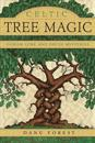Celtic Tree Magic