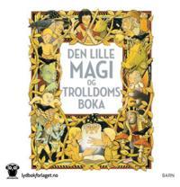 Den lille magi- og trolldomsboka