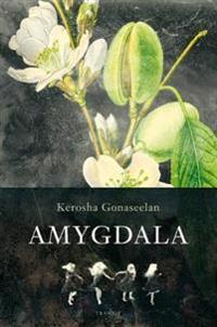 Amygdala - Kerosha Gonaseelan pdf epub