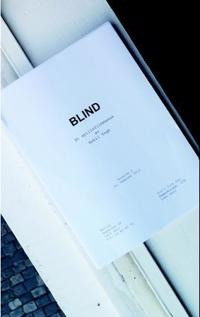 Blind - Eskil Vogt   Inprintwriters.org