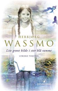 Lite grønt bilde i stor blå ramme - Herbjørg Wassmo | Ridgeroadrun.org