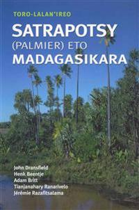 Toro-lalan'ireo Satrapotsy Palmier Eto Madagasikara / Field Guide to the Palms of Madagascar