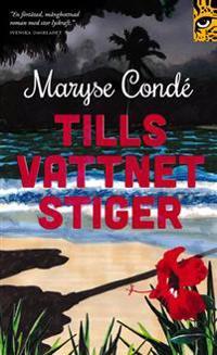 Tills vattnet stiger - Maryse Condé | Laserbodysculptingpittsburgh.com