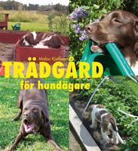 Trädgård för hundägare