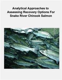 Analytical Approaches to Assessing Recovery Options for Snake River Chinook Salmon