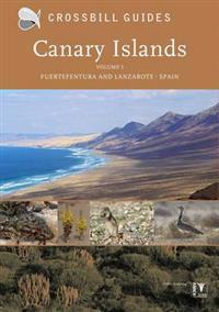 Canary islands - fuerteventura and lanzarote - spain