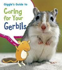 Giggles guide to caring for your gerbils
