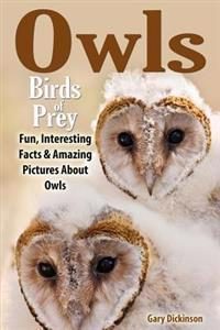 Owls: Birds of Prey