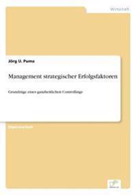Management Strategischer Erfolgsfaktoren