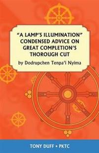 A Lamp's Illumination Condensed Advice on Great Completion's Thorough Cut