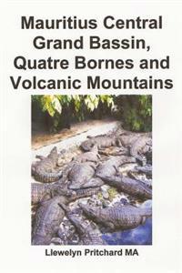 Mauritius Central Grand Bassin, Quatre Bornes and Volcanic Mountains: En Souvenir Indsamling AF Farve Fotografier Med Billedtekster