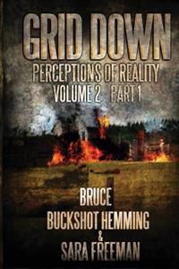 Grid Down Perceptions of Reality Vol 2 Book 1: Vol 2 Book 1
