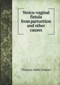 Vesico-Vaginal Fistula from Parturition and Other Causes
