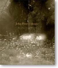 John Bauers skogar