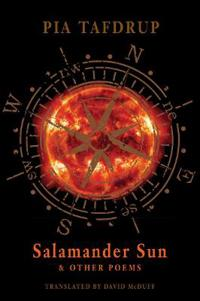 Salamander Sun & Other Poems