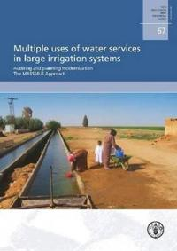Multiple uses of water services in large irrigation systems