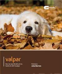 Valpar : hur du förstår och tar hand om ditt husdjur