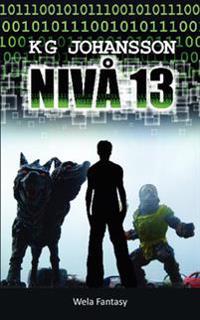 Nivå 13
