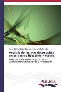 Analisis del Estado de Aeracion En Celdas de Flotacion Industrial