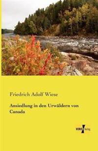 Ansiedlung in Den Urwaldern Von Canada
