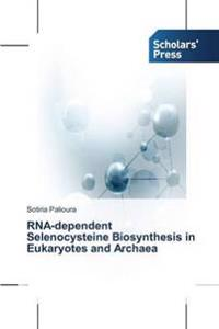 RNA-Dependent Selenocysteine Biosynthesis in Eukaryotes and Archaea